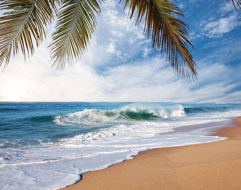 Find out more about Sri Lanka: This time it's the South Coast